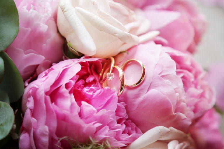 Eheringe für eine Hochzeitsfeier und Trauung auf Rosen dekoriert